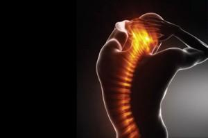 Spine Flexibility